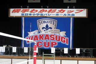 Wakasugi 01