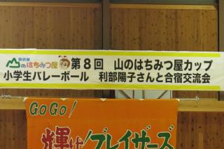 はちみつ屋カップ  01