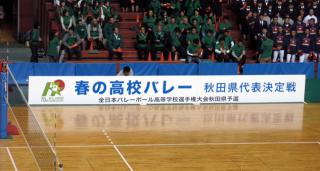 Haruko 00