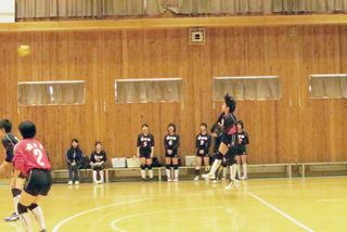 Taawako 14